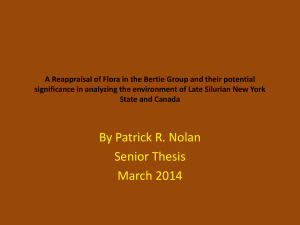 A Reappraisal of Flora in the Bertie Group PP