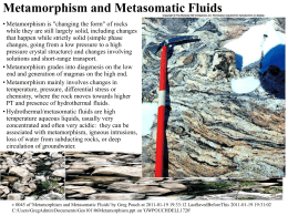 Metamorphism and Metasomatic Fluids