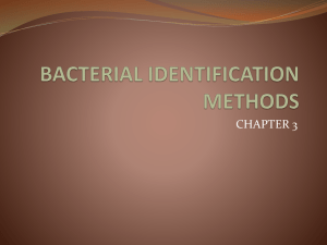 BACTERIAL IDENTIFICATION METHODS