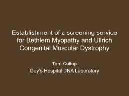 Establishment of a screening service for BM and UCMD