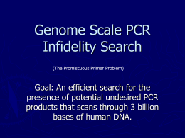 Genome Scale Primer Infidelity Search