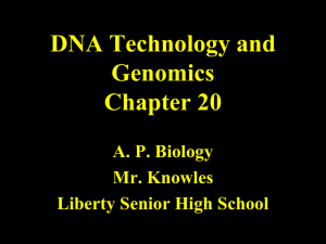 Chapter 20 DNA Technology and Genomics