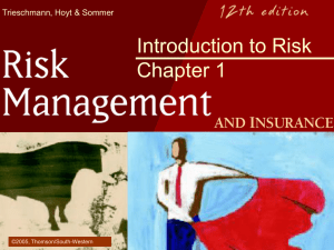 Introduction to Risk Chapter 1