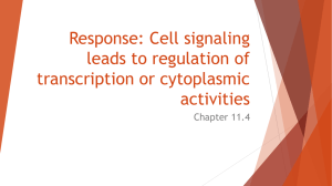 11.4 Response: Cell signaling leads to regulation of transcription or