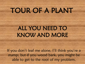 tour of a plant - RHSAPBiologyJacobs
