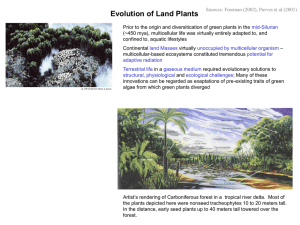Evolution of Land Plants