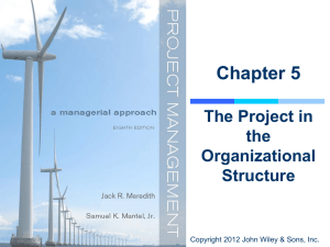The Project in the Organizational Structure
