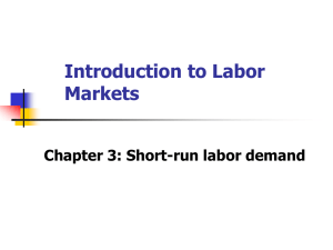Introduction to Labor Markets