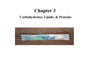 Starting Chap. 3 CARBOHYDRATES