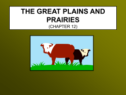 THE GREAT PLAINS AND PRAIRIES