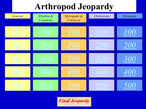 Arthropod Jeopardy - Jutzi