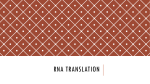 RNA Translation - Cloudfront.net