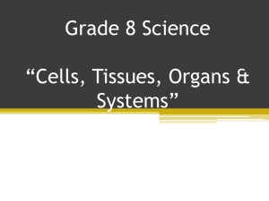 Body Systems - Prairie Spirit Blogs