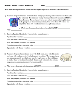 Darwin's Natural Selection Worksheet Answers