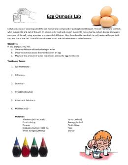 Name: Block: ______ Date: ______ Bio A - Egg Osmosis Lab