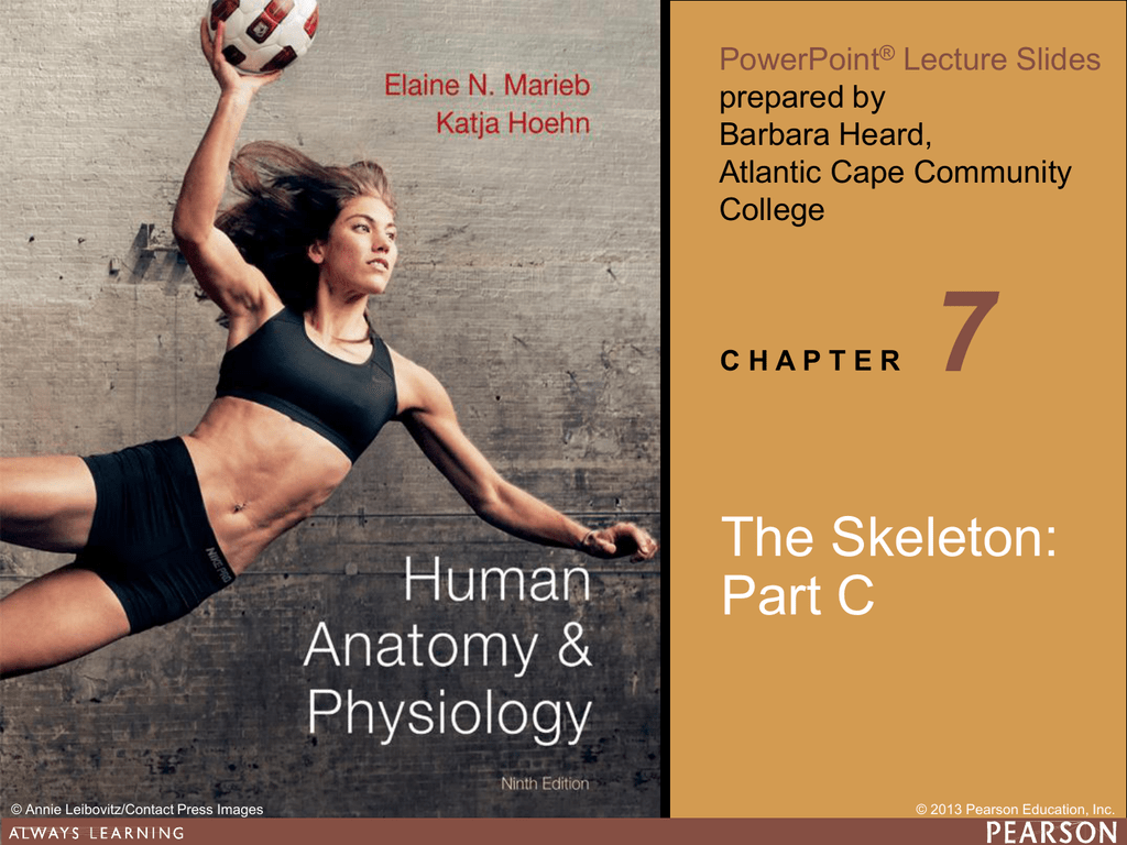 Chapter 7 Ppt C