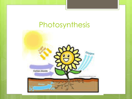 chapter 7 photosynthesis notes This review is meant to highlight basic concepts from chapter 7  refer back to  your notes, unit objectives, labs, handouts, etc to further prepare for your exam  define photosynthesis as it relates to its purpose and write the equation that.