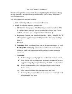 Osmosis Experiment - worksheet