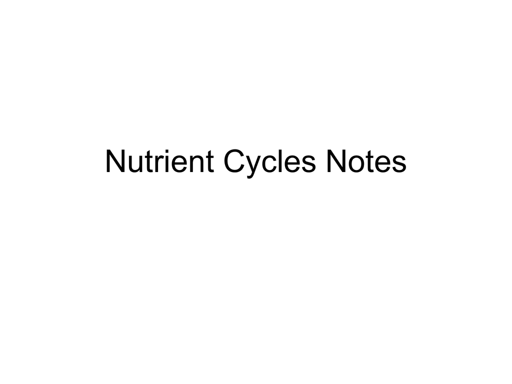 Pictures Water Carbon And Nitrogen Cycle Worksheet Answers – Cycles Worksheet Answers