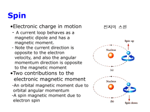 Electronic Magnetic Moments