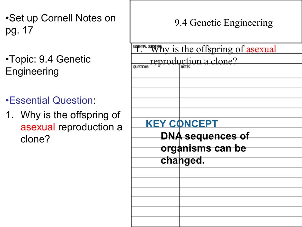 9 4 genetic engineering