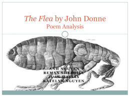 an analysis on the metaphors throughout the poem the flea by john donne Analysis of john donne's poem, the flea essay - the flea john donne's poems are similar in their content - following a unique poetic language of the renaissance, john donne's 'the flea' is a poem illustrating the metaphor of a flea to represent the sexual act and relations between a man.