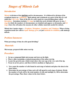rubric for mitosis essay Analytical essay rubric 3 - exemplary 25 - satisfactory 2- below  satisfactory 1 - unsatisfactory key question  problem, or issue --clearly  defines.