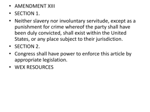 Reconstruction Amendments Primary Analysis