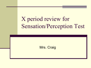 X period review for Sensation/Perception Test