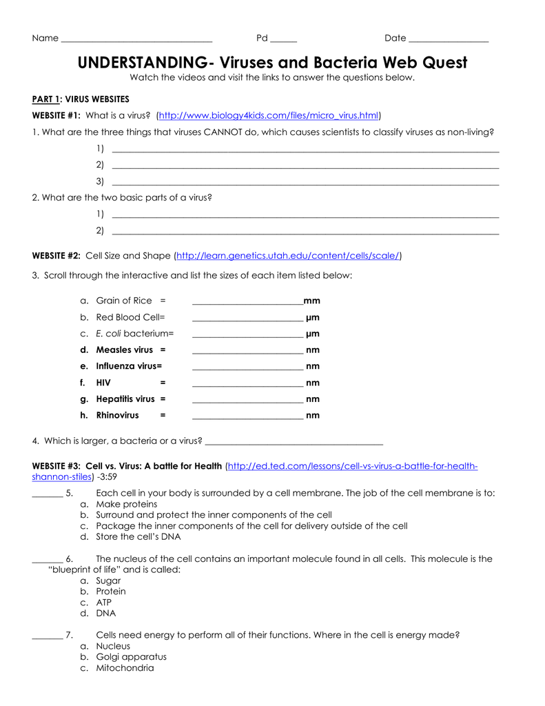 Worksheets Virus And Bacteria Worksheet understanding virus and bacteria webquest