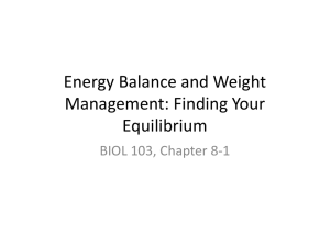 Energy Balance and Weight Management: Finding Your Equilibrium