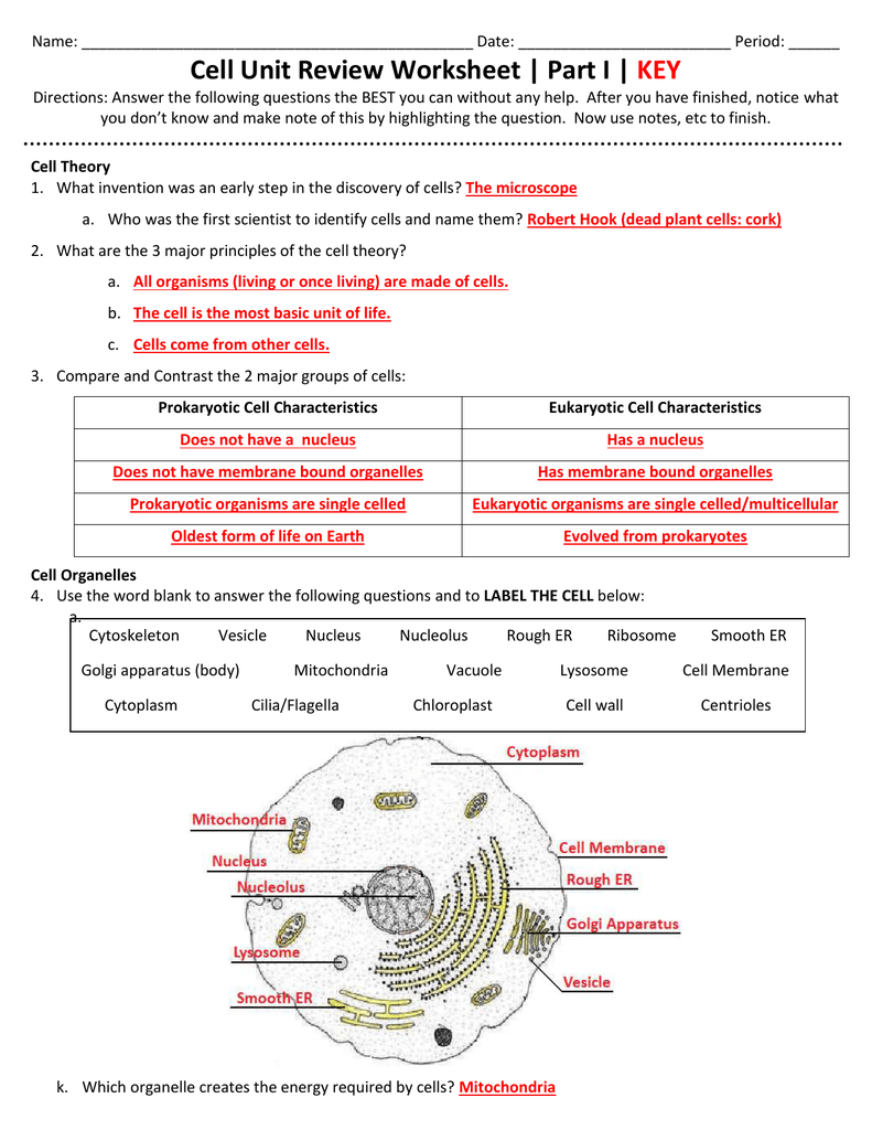 Cell Unit Review Worksheet Part I Key