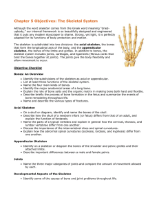 Chapter 5 Objectives: The Skeletal System