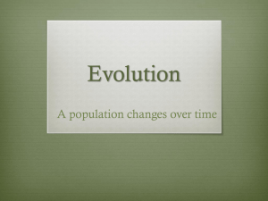 evolution powerpoint 2014