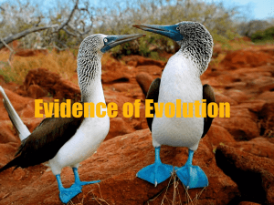 10.4- Evidence of Evolution