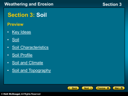 soil - Bwyoung