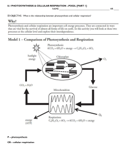 Name: TOC# Photosynthesis and Respiration