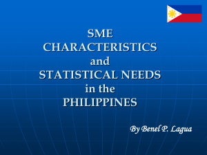 Sme Characteristics And Statistical Needs In The