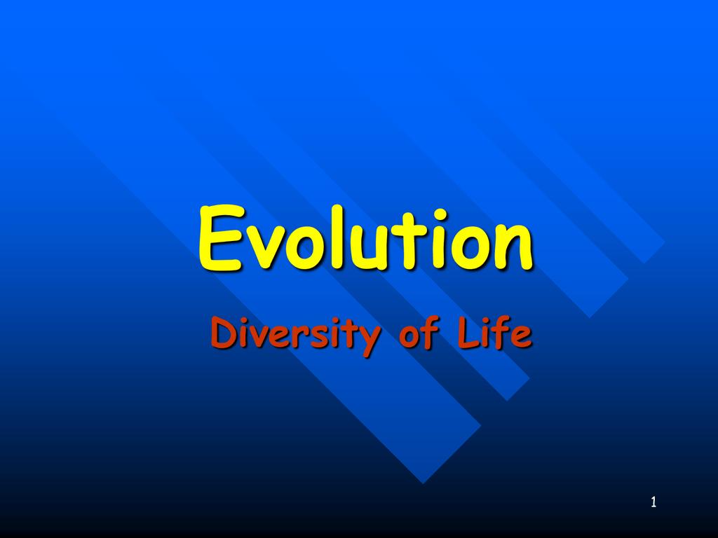 evolution of life - 960×720