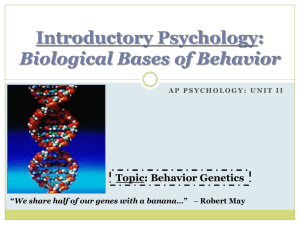 Biological Bases Powerpoint – Genetics