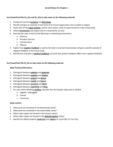 Cornell Notes for Chapter 1 Use PowerPoint files 01_01a and