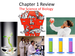 Chapter 1 Review Whi..