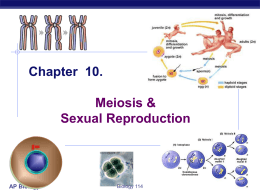 AP Biology Chapter 10. Meiosis & Sexual - Environmental