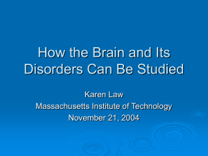 How the Brain and Its Disorders Can Be Studied