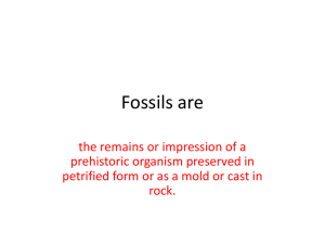 Fossils are - Pleasantville High School