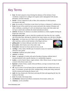Key Terms - msschwager3rdgrade