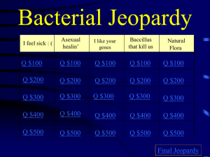 Bacteria and Viruses Jeopardy