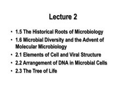 Lecture 2 - Tripod.com