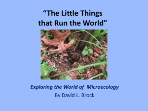 research workshop - The Little Things that Run the World