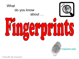 fingerprint identification thesis